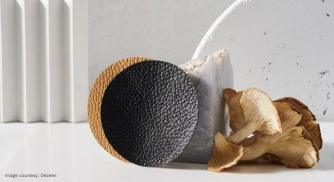 Fungi Mylo Is The New Sustainable Replacement Of Leather In The Fashion Industry