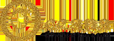 Vaidaan Logo